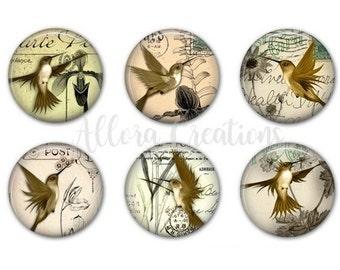 Hummingbird Magnets, Fridge Magnets, Magnets, M013