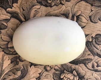 Egg Shaped Soap