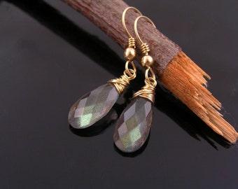 Labradorite Earrings, 14K Gold Filled Earrings, Labradorite GF Earrings, Labradorite Jewelry, Gold Earrings, Wire Wrapped Earrings, E2405