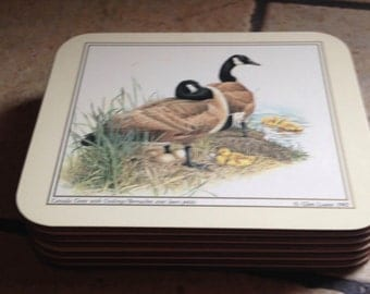 6 Canada Goose and Gosslings Coasters