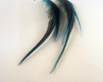Feather Earrings teal blue badger long thin real feathers