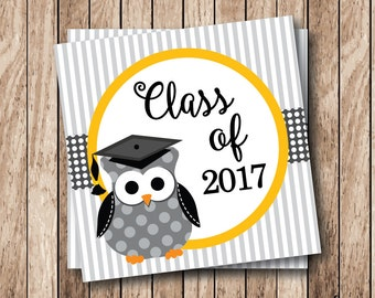 Instant Download . Printable Graduation Tags, Printable Class of 2017 Tags, Graduation Owl Tags