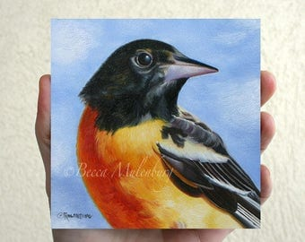 Baltimore Oriole Original oil painting wildlife nature fine art miniature