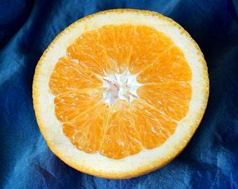 Citrus Photograph