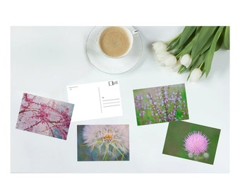 Postcard set, art postcards, postcard display, art prints, fine art prints, dandelion, cherry blossom, stationery set, notecards, card sets