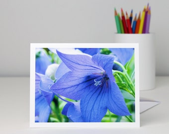 Blue balloon flower photography note card, floral photo blank notecard, all occasion greeting card, Father's Day card, a2 or a7 stationery