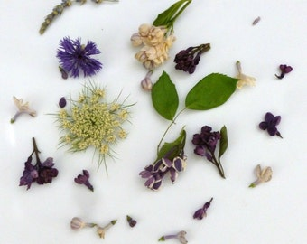 Dried Flower Confetti, Flower Girl, Wedding Confetti, Table Decorations, Lavender, Petals, Aisle Decor, Craft Supplies, Daisy, 75 US cups