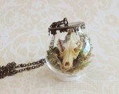 Wolf skull vial necklace -taxidermy- Skull necklace- gothic steampunk jewelry - glass jar  necklace - curiosities -reliquary - victorian