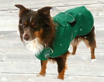 Winter Dog Coat, tough diamond ripstop, custom made with tummy panel for your dog, velcro closure