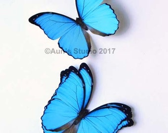 Blue morpho butterfly, realistic paper butterfly cutout, 5 pieces