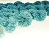 Mini Skein DK or Fingering Ombre Choose Your Yarn Base -  Arctic Ice