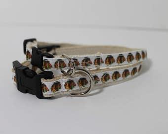 Chicago Blackhawks cat or dog collar
