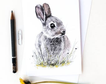 Blank Card - Charlie Bunny - Pencil Drawing