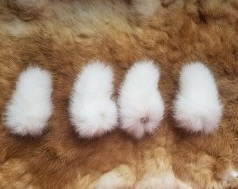 Rabbit Tail - Bulk lot of 4 - Naturally Dried - White