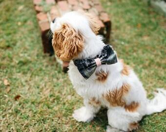 Camo Orange Seersucker Dog Bow Tie Dog Collar, Camouflage Dog Bow Tie Collar, Dog Bowtie Collar, Southern Dog Collar, Hunting Dog Collar