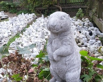 GROUNDHOG or WOODCHUCK Concrete Statue