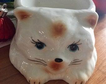 Cute kitty cat bowl