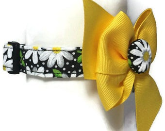 Black and Yellow Daisy Floral Dog Collar size Extra Small