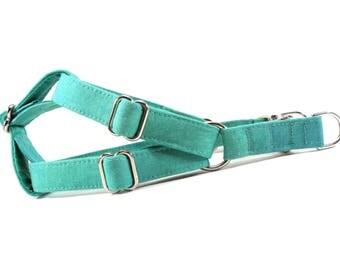 Patina Aqua Green Dog Step in Harness