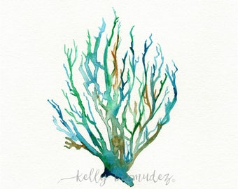Wall Art, Watercolor Coral, Coral Art, No. 11 Sea Coral,  Watercolor print, Coral painting