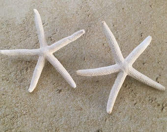 Starfish boutonniere's, Starfish Pin, Men's Boutonnieres, Beach boutonniere's, Beach wedding, Beach Wedding Boutonnieres, Beach Boutonniere
