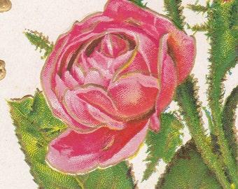 "Ca. 1909 ""Roses and Shamrocks"" Embossed Friendship Greetings Postcard - 359"