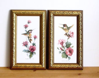 Hummingbird Prints Set of 2 Carolyn Shores Wright Gold Framed Calliope and Costa Nature Watercolor Art