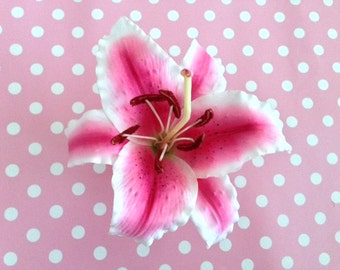 New!! Pink & White Tiger Lily Hair Clip, Tropical Hair Accessories, Flower Hair Clips