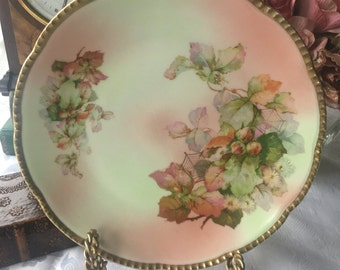 Antique  Prussia  Plate Spider Web  Overlay Hand Painted