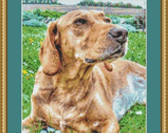 Labrador Cross Stitch Pattern
