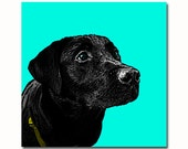 Personalized pet dog portrait Andy Warhol style Pop art - your picture - natural colors - digital