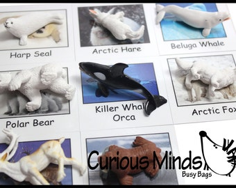 Montessori Arctic Animal Match - Miniature Animals with Matching Cards - 2 Part Cards.  Montessori learning toy, language materials