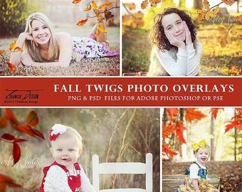 ON SALE Photography Overlays Fall Twigs , Fall Photo Overlays, Autumn Twigs Photo Overlays, INSTANT Download