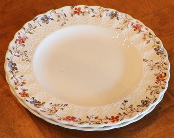 "Copeland Spode English Ironstone ""Wicker Dale"" Chelsea Wicker Shape Set of Two Salad Plates"