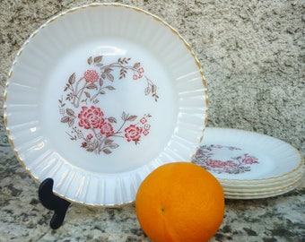 six dinner plates Termocrisa (Mexico) white milk glass brown/red floral design