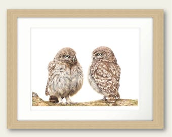 Wise Words Owl Limited Edition Print Print Artwork Picture