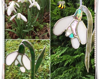 Stained Glass snowdrop
