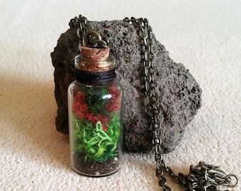 Real moss pendant, Nature jewelry, terrarium glass jewelry