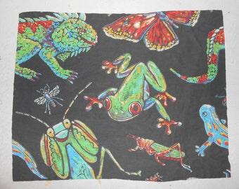 Vintage Bug Frog Lizard Praying Mantis Dragon Fly Themed Standard Pillow Sham Set