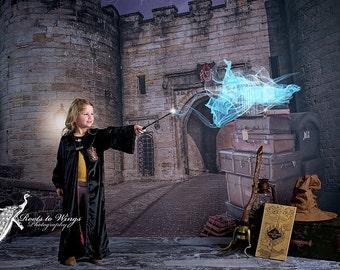 Harry Potter Photography Backdrop, 60x80 Fleece, 9 3/4, Hogwarts, Muggles, Gryffindor, hufflepuff, Voldemort, Quidditch, Wizard -AnnaCas 85