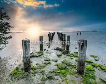 Dunedin Sunset - Seascape Photography Print-/Pier/Coastal/ Beach/ Ocean/ Water