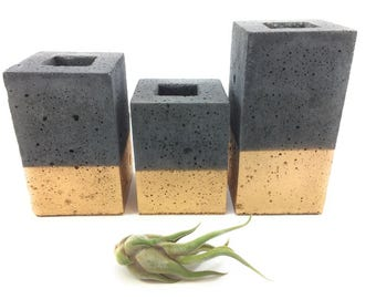 Square Concrete Succulent Planters/Air Planters/Vase.(set of 3). Charcoal & Gold.   FREE SHIPPING! Ready To Ship!