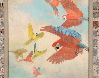 Julius Moessel - Gorgeous Flock of Parrots -Original Oil Painting c.1930s
