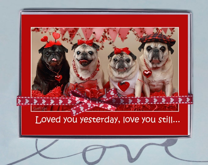 BOX OF 10 5X7 CARDS Love You Always - Funny Valentines Day Card -