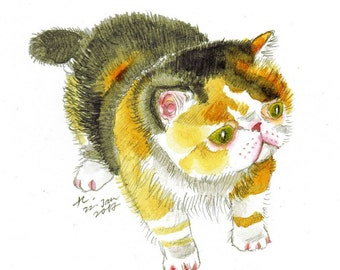 "Original Artwork, ""Calico"" / Exotic Shorthair / Calico Cat / Cat Painting / Cat Drawing / Cat Illustration / Cat Drawing"