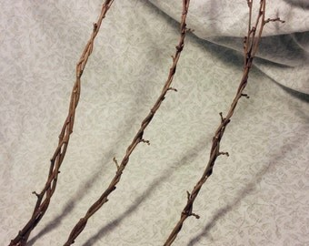 Mulberry Braid Twig Wand Handmade Metaphysical Craft Supply for Use in Wicca Magick Protection Spells or Decor // Natural Wood and Copper