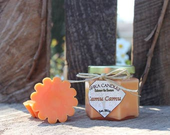 CAMU CAMU Wax Melt Tarts! (Box of 5) Tropical Scent! summer wax melt, spring wax melt, citrus scent, peach wax melts, orange wax melts
