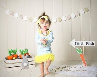 Easter carrot patch photography prop