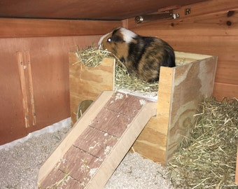 Small cage size Guinea pig castle