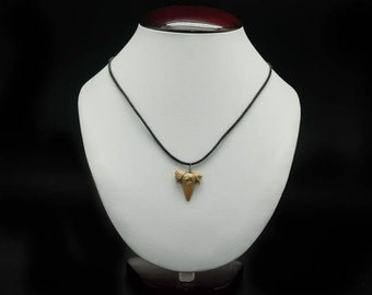 Shark Tooth Necklace: Non Adjustable Cord (282-4)